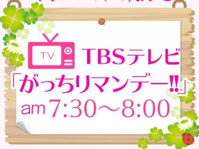 TBSテレビ「がっちりマンデー!!」